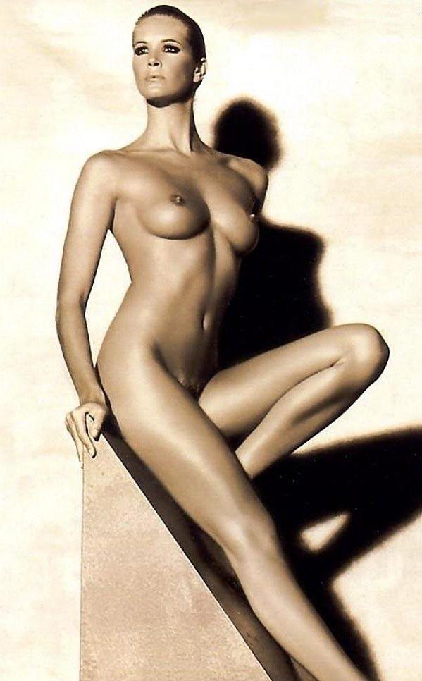 Elle Macpherson  nackt