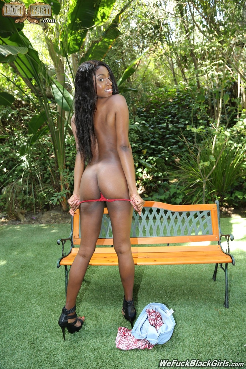 Ebony porn photos. Gallery № 525. Photo - 4